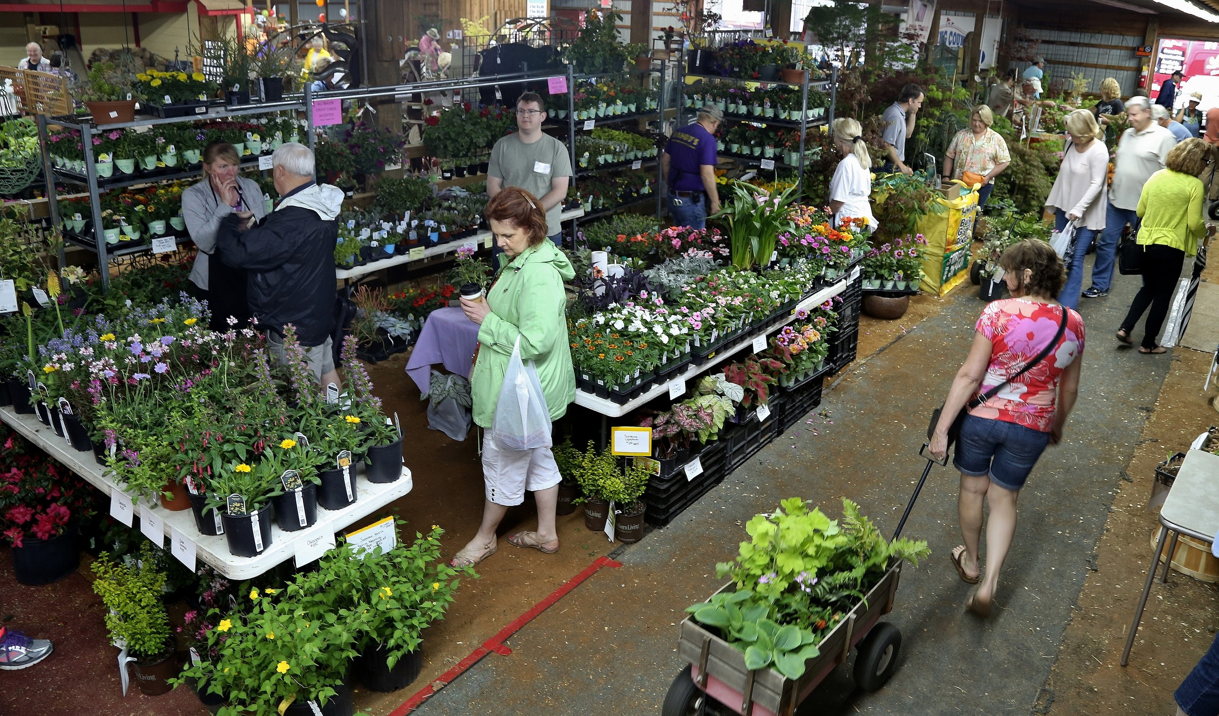 Forsyth County Master Gardeners' 18th Annual Plant & Garden Event