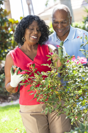 Seniors enjoy less stressful, healthier lives, when they garden, especially with others. (Photo © spotmatikphoto - Fotolia.com)