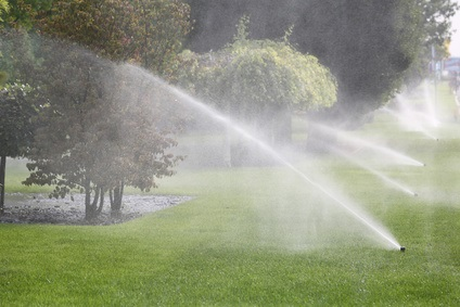 Attempting to water the trees and the lawn simultaneously likely results in losing water to mist evaporation and misdirection onto impermeable surfaces.