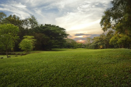 Natural open spaces inspired the design and creation of public and private man-made lawns.