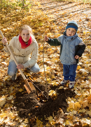 Fall is the very best time to plant trees, and getting the kids involved is great.