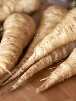 Parsnips taste like carrots that have been kissed with sugar.