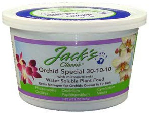 orchid-special