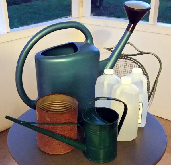 Watering cans, milk jugs, and even rusty old coffee cans are great for watering by hand.