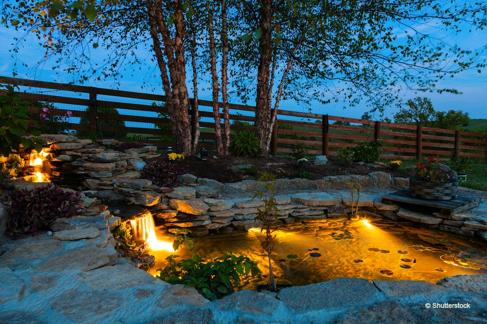 Bring Your Pond To Life At Night With Outdoor Color Changing